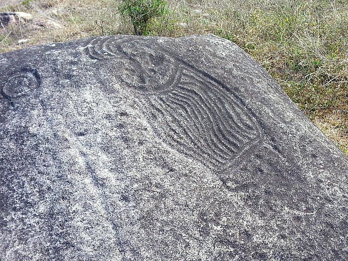 Petroglyphs on the Vallarta Adventures Hidden Mexico Tour