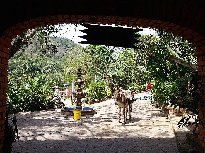 Dona Chanita Tequila Distillery - Vallarta Adventures Hidden Mexico Tour