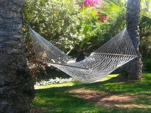 Hammock at Parker Palm Springs Luxury Resort Hotel