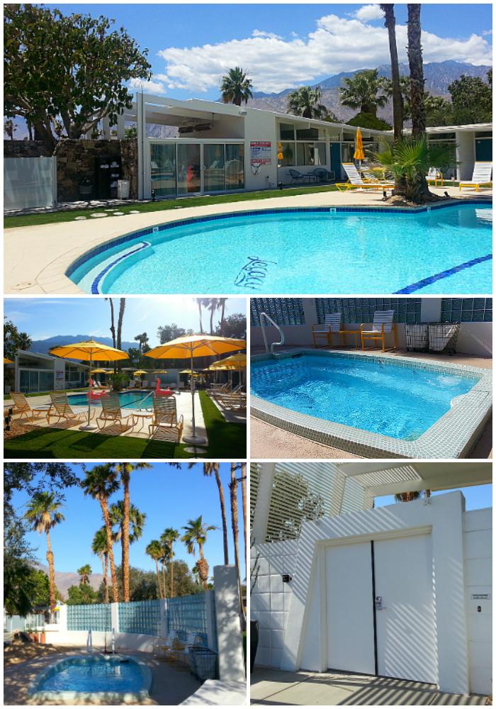 Pin by M&C on travel | Modernism week palm springs, Palm