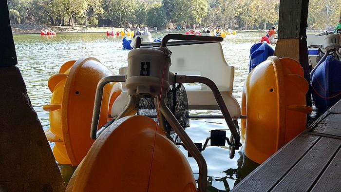 Paddleboats at Irvine Regional Park