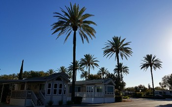 The Cottages at Golden Village Palms - Hemet, California