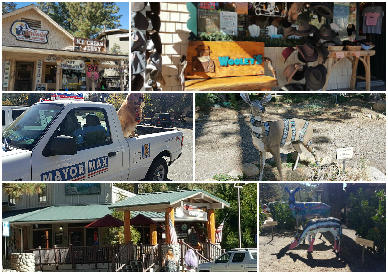 An Afternoon in Idyllwild