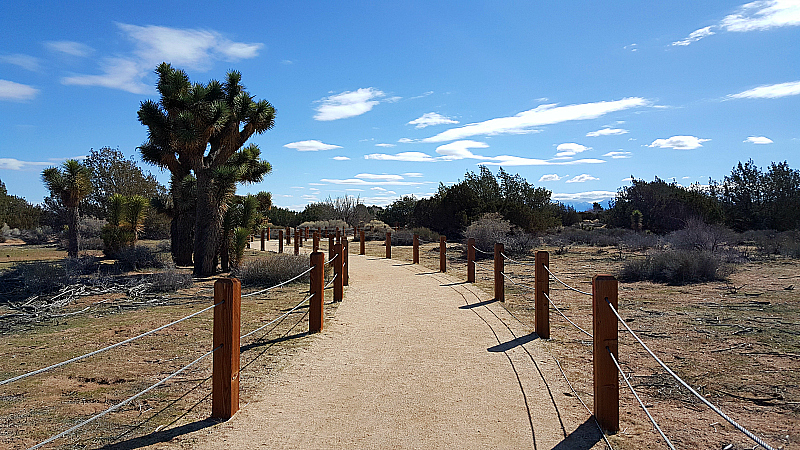 Prime Desert Woodland Preserve in Lancaster