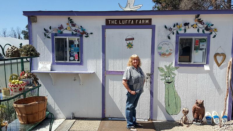 The Luffa Farm Tour in Nipomo, California