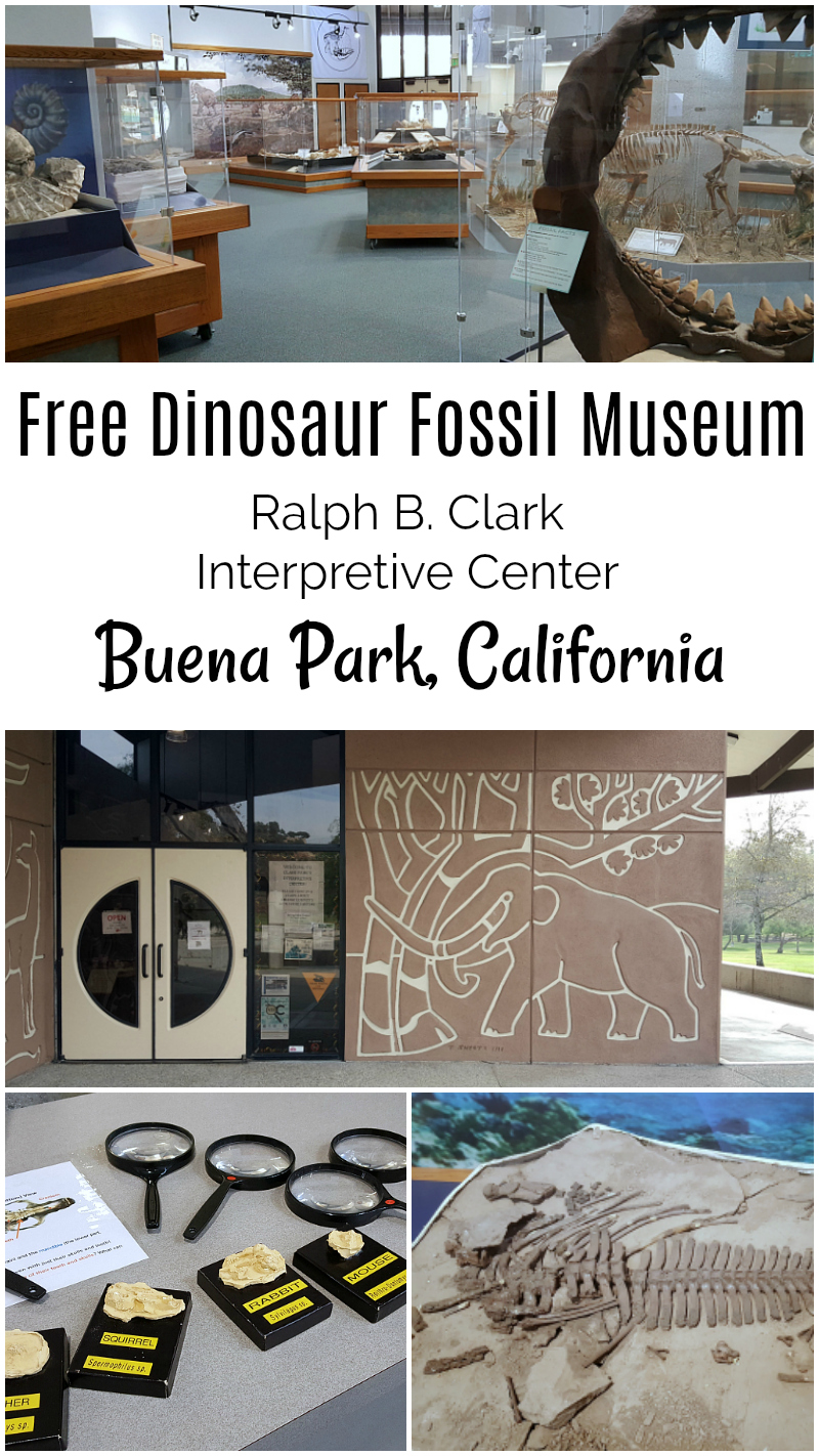 Free Orange County Museum Dinosaur Fossil Interpretive Center Buena Park California