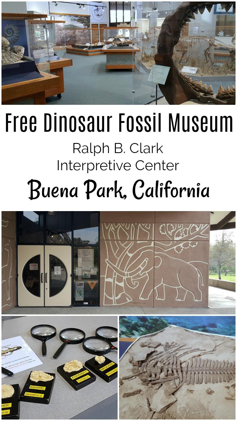 Free Orange County Museum Dinosaur Fossil Interpretive Center Buena Park California