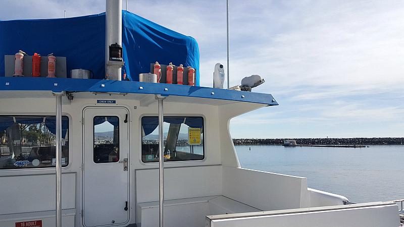 dana point harbor dana pride boat