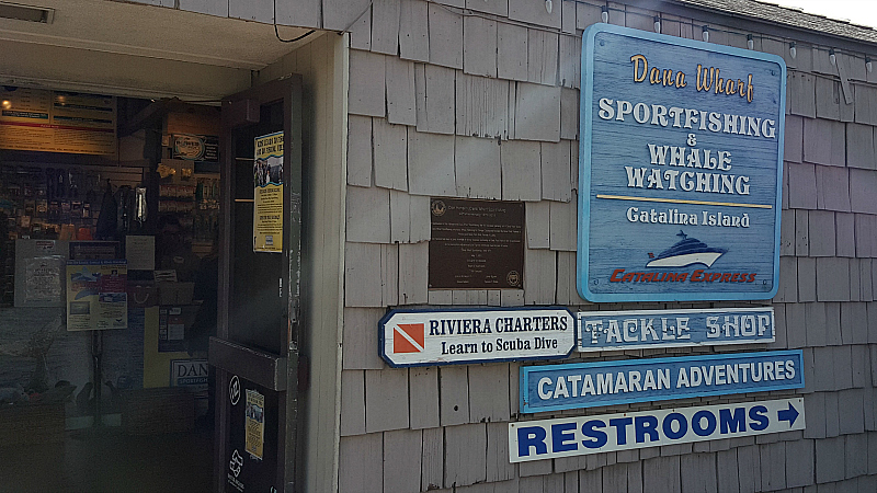 dana wharf sportfishing and whale watching