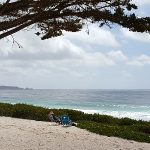 Carmel Beach Picnic by The Sea