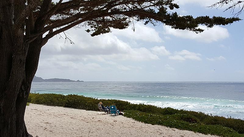 carmel by the sea picnic beach