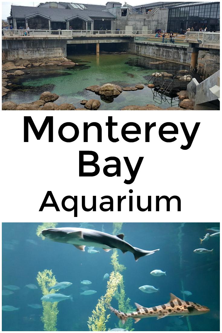 Monterey Bay Aquarium on the California Coast