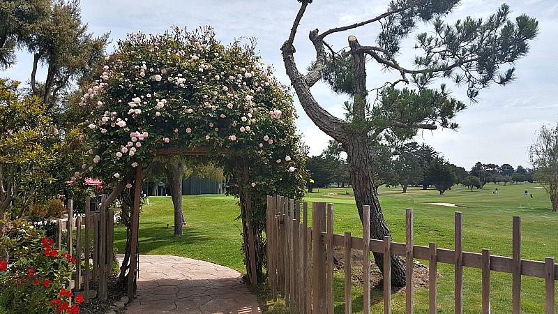 hyatt flowering archway golf