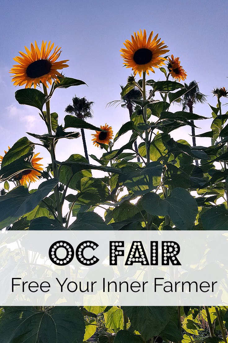 OC Fair 2018 Free Your Inner Farmer