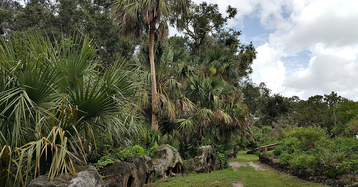 the titusville enchanted forest