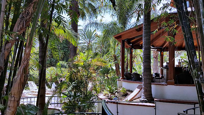 glen ivy bar palms