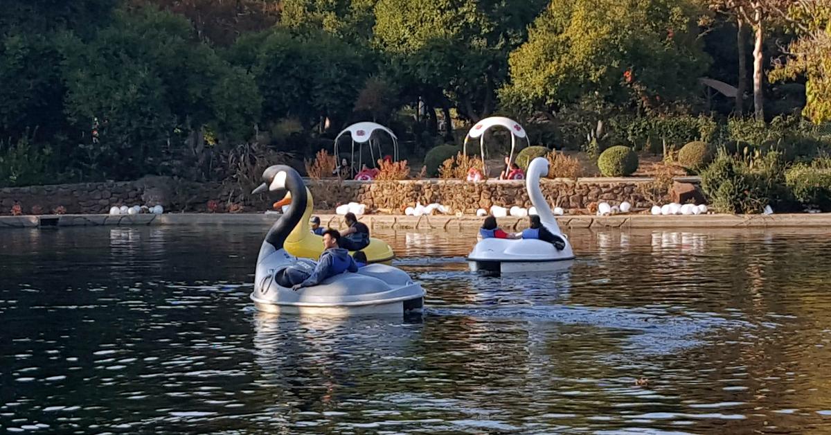 12 gilroy gardens swan