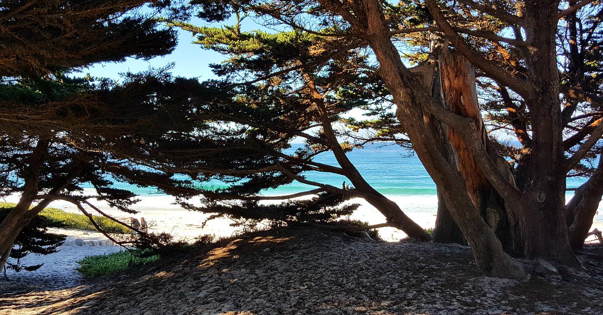 2 carmel beach