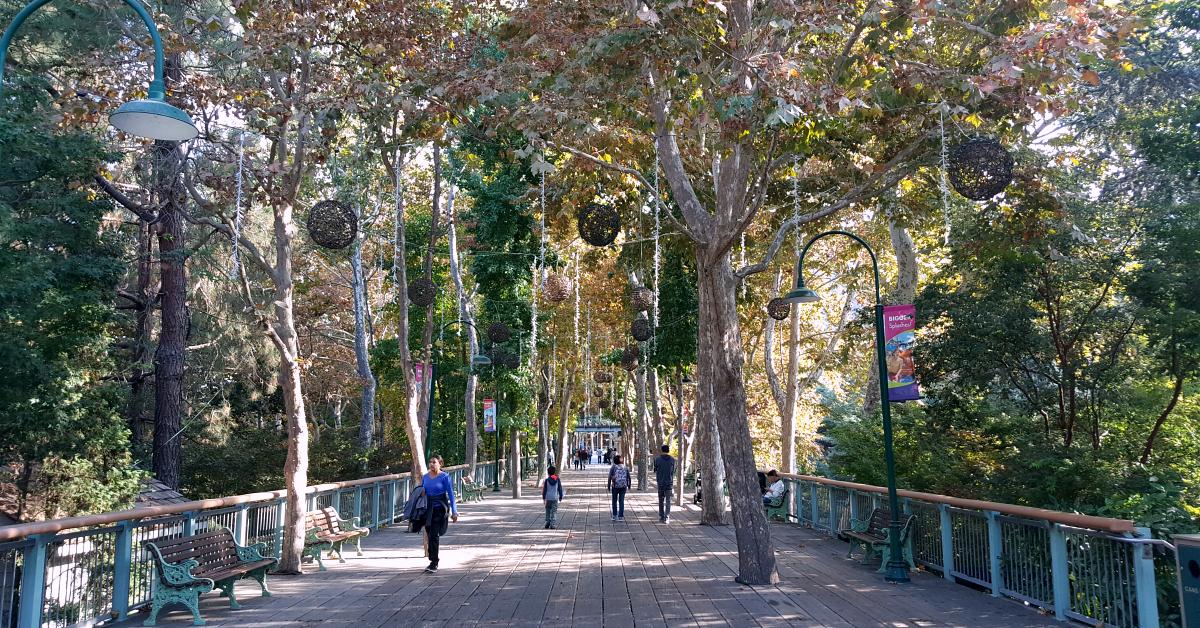 5 gilroy gardens bridge