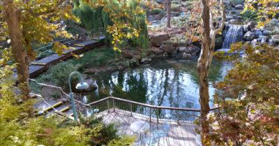 6 gilroy gardens pond