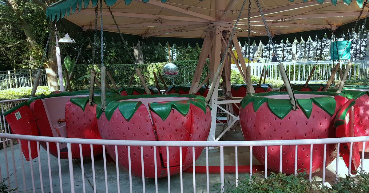 7 gilroy gardens strawberries