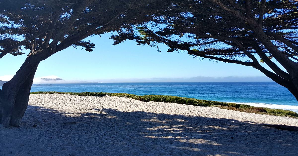 8 carmel beach