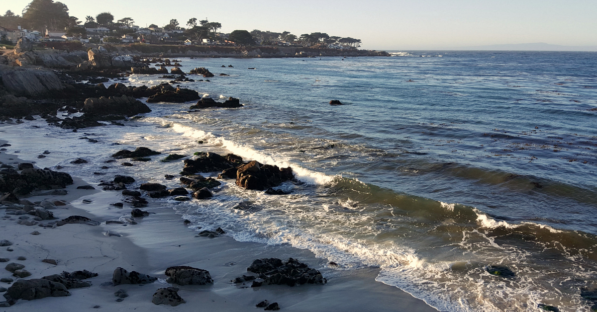 1 pacific grove
