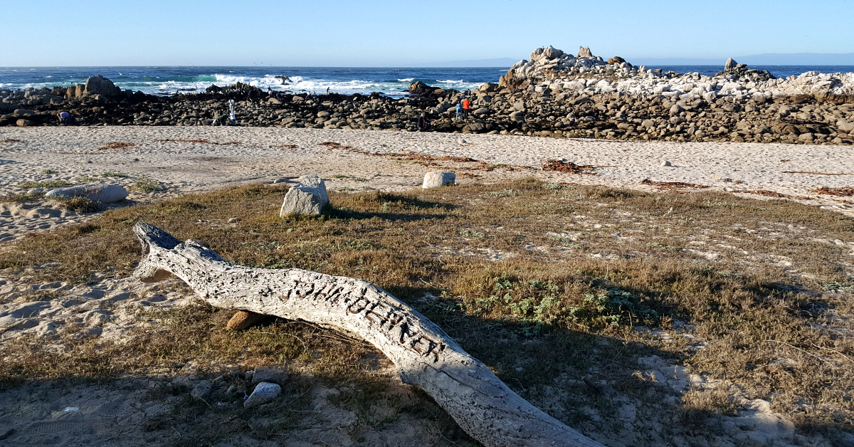 pacific grove john denver memorial