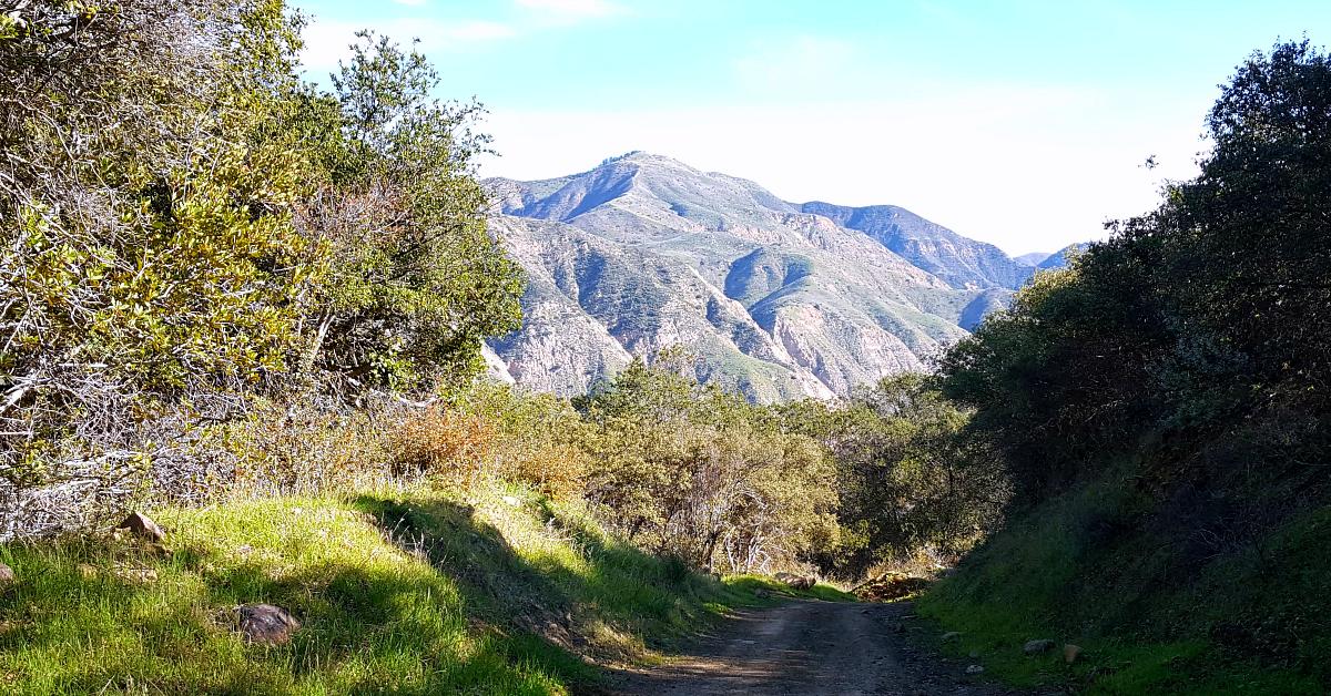 more near rancho oso
