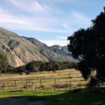 What to Do Near Rancho Oso Thousand Trails Resort