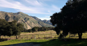 rancho oso view from cabin