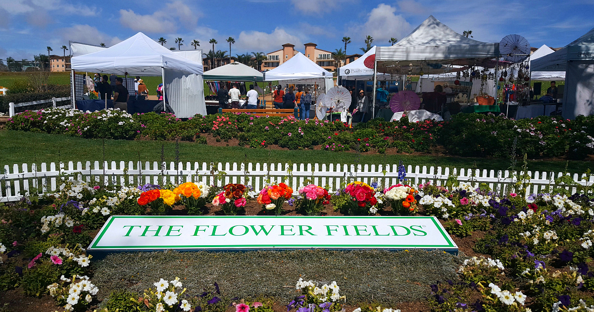 1 flower fields entry sign