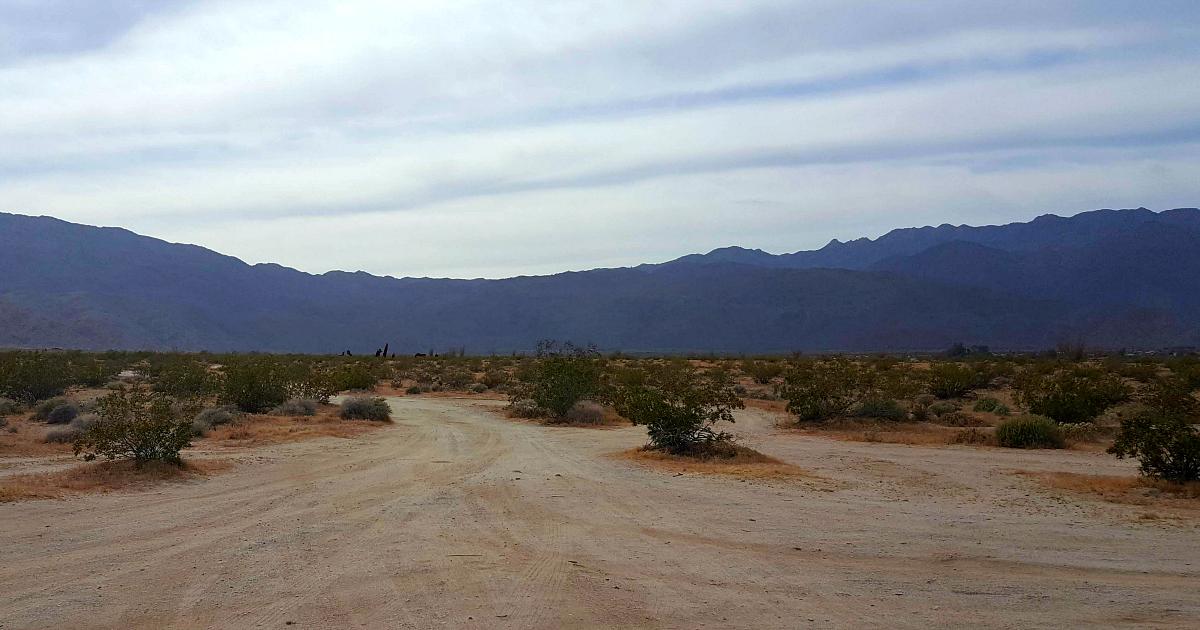 galleta meadows dirt road